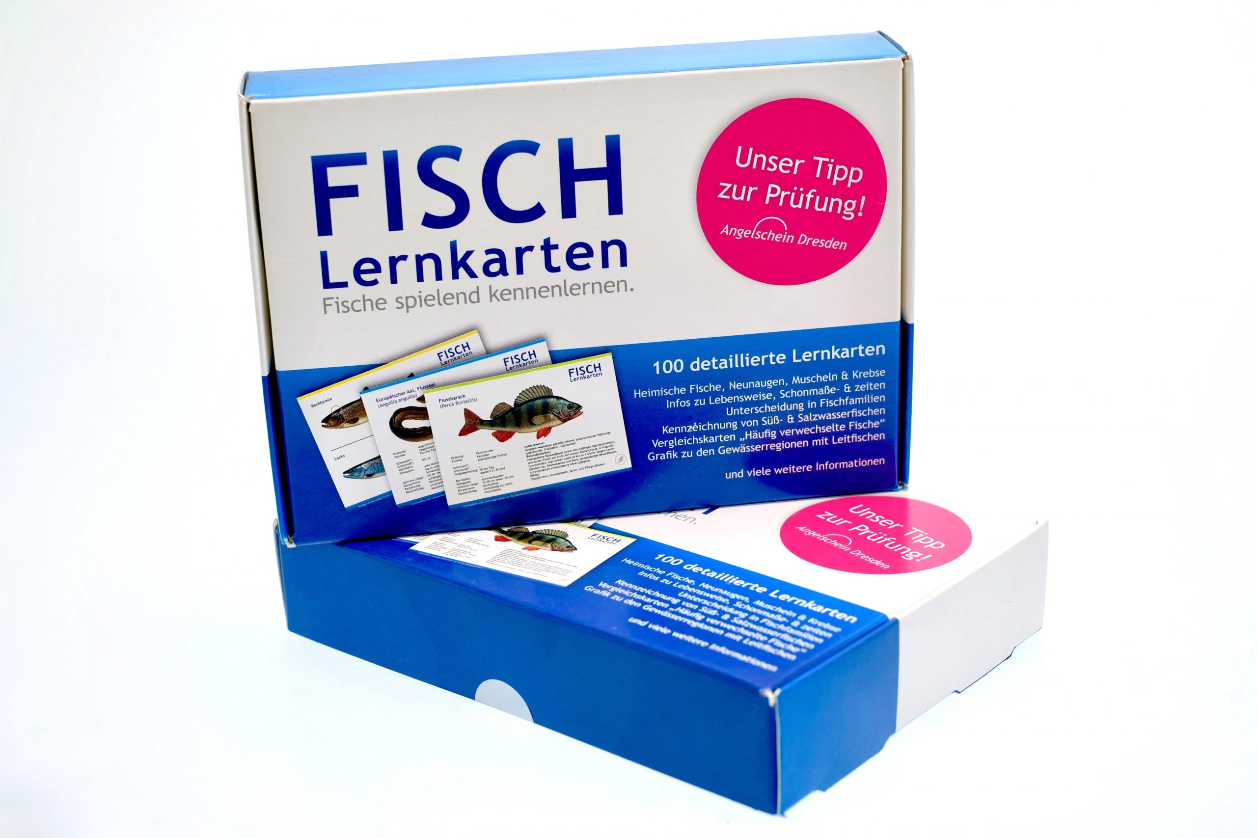 FISCH Lernkarten Einheimische Fische spielend kennenlernen